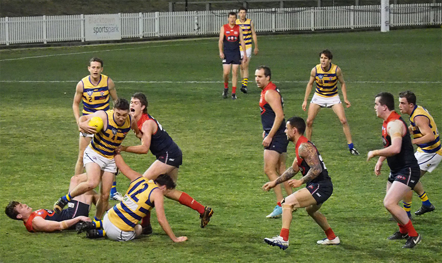 GRAND FINAL PREVIEW AND PREDICTION: Men's Division One